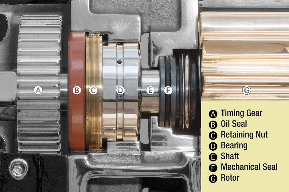 Electric_Powered_Foam_Pump_Skid_Unit-_rh_5196_bearings-seals.jpg